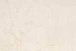 Spieki - Laminam - i naturali marmi Marfil szlifowany